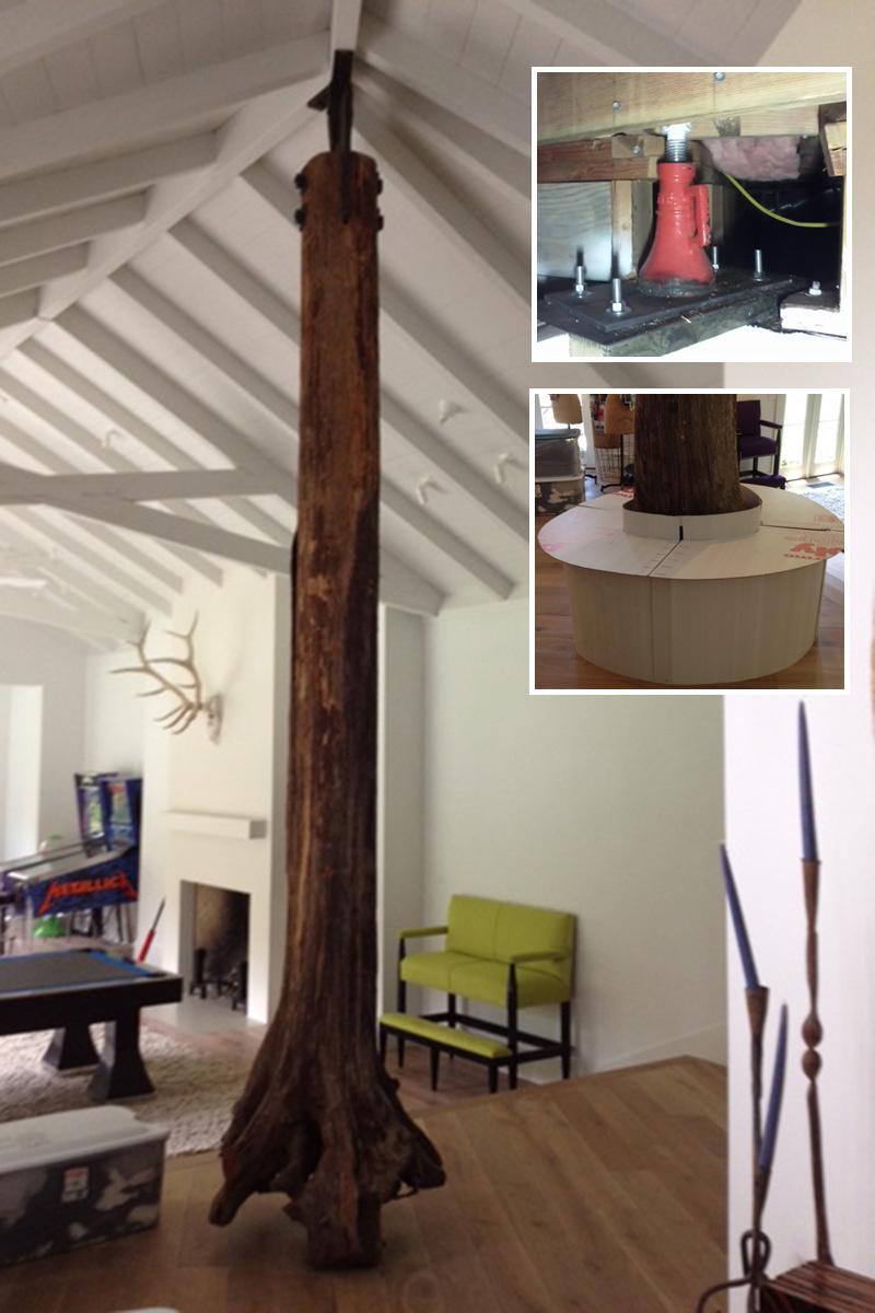 Tree Used As Column